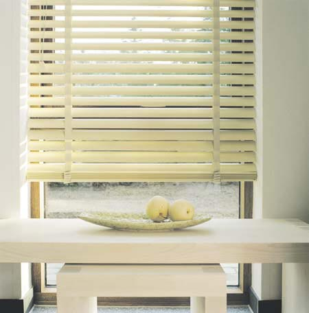 interior retro venetian blinds