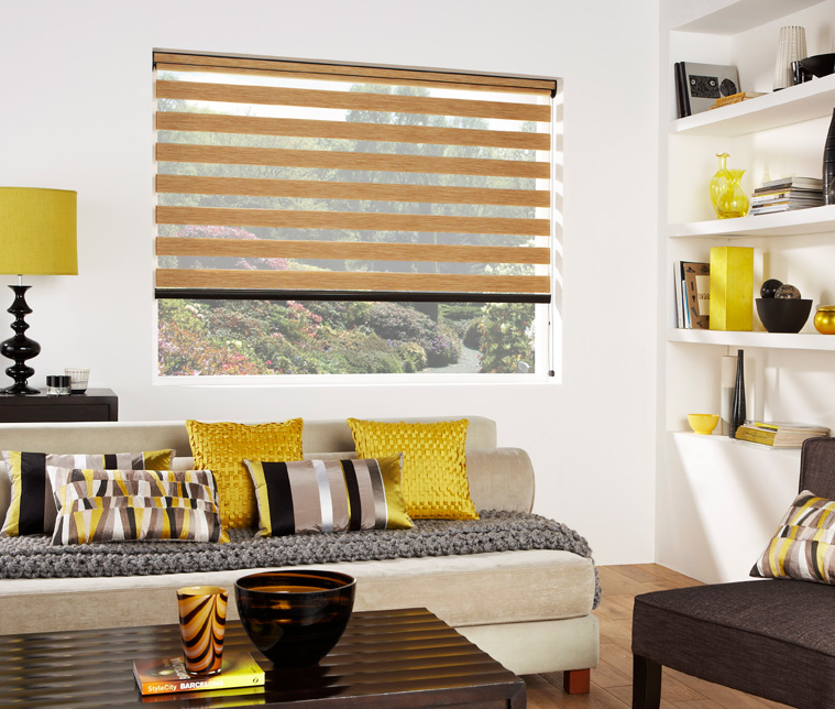 modern vision blinds